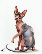 Original Oil Portrait Painting Sphynx Artist Signed Artwork Kitten Cat Art