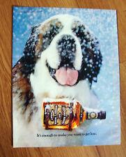 1982 Chivas Regal Whiskey Ad St Saint Bernard Dog 00004000