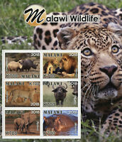 Malawi 2018 MNH Wildlife Rhinos Lions Elephants Hippos 6v M/S Animals Stamps