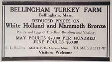 1932 AD(XB16)~BELLINGHAM TURKEY FARM, BELLINGHAM, MASS. HOLLAND AND MANMOTH