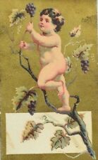 Lot Of 3 Victorian Trade Cards Cherubs Grapes Swing Snow Fabulous! P46