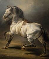 Theodore Gericault Study for A Grey Horse Poster Giclee Canvas Print