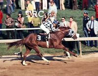 SECRETARIAT & RON TURCOTTE - ORIGINAL 1973 PREAKNESS STAKES 8X10 PHOTO!
