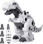 Kids Dinosaur Toys for Age 3 4 5 6 7 8 9yr Year Old Boys Girls, Educational Toy