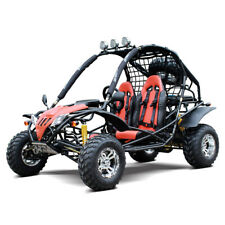 Dongfang 200Cc Go Kart Adult Gas Powered With Auto Tranny/Reverse Df200Gka