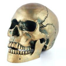 Human Life Size Bronze Skull 4D Model Head Statue Sculpture Skeleton Figurine