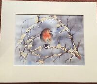 Original Watercolour Robin On Snowy Branch By Jane Parker