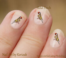 Bird Goldfinch, Set of 24 bird  Nail Art Stickers Decals