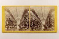 UK Londra Cristallo Palace Grande Nef Foto Stereo Albumina c1860