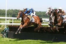 Maria's Horse Laying System -BETFAIR BETTING SYSTEM - £3K TO £100K IN 303 DAYS