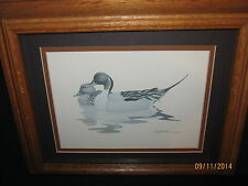 "Richard Sloan Pintail Ducks Signed Print by Artist in Solid Oak Frame ""Decoy"""