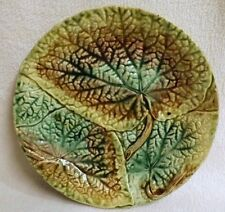 Begonia Rex Majolica Plate, Early 1800's