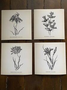 "4 x Vintage Style Black & White Botanical Arts Prints Set - 8"" x 8"""