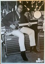 Bo Diddley Guitar Poster 23.5 X 33