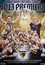 Hawthorn 2013 AFL Premiers Hawthorn Hawks Football Club Premiership Poster