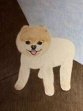 Fluffy Pomeranian Pup