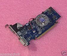 SCHEDA GRAFICA PCI EXPRESS _128 MB_SAPPIRE RADEON _X1300_HM-64BIT 128M