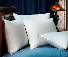 Pacific Coast Touch of Down Standard Pillow Set (2 Standard Pillows)