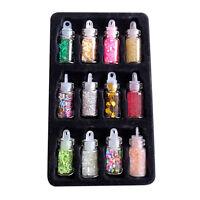 12X Nail Art Dekorationen Pailletten Glitter Pulver 12 Farben für Nagel Zubehör