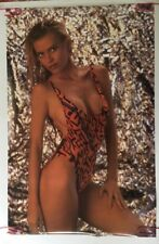 Sandra Wild Vintage Poster Sexy Pin-up Bathing Suit 1990's Man Cave Dorm room