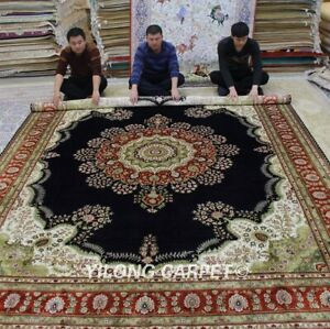 Yilong 9'x12' Large Hand Knotted Carpet Living Room Handmade Silk Area Rug LH986