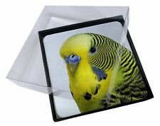 4x Yellow Budgerigar, Budgie Picture Table Coasters Set in Gift Box, AB-51C
