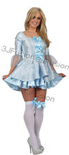 ADULT PRINCESS CINDERELLA SEXY CINDERS LADIES FANCY DRESS COSTUME STORY BOOK (A)