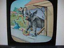 Magic Lantern Slide: Elephant Attack, Dissolving Slide, Catastrophe Series no.15