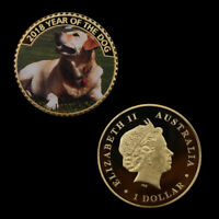 Labrador Gold Plated Commemorative Metal Coin Challenge Coins for Child Souvenir