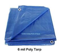 40' x 40' BLUE ECONOMY 6 mil POLY TARP