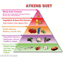 The Atkins Diet ebook on CD lose weight easily with 1000 recipes & carb counter