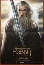 Affiche LE HOBBIT : LA DESOLATION DE SMAUG Ian McKellen PETER JACKSON 40x60cm b*