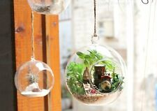 Wooden Dollhouse DIY Miniature Hanging Glass Ball 3D Fairy Forest ELF TRIBE Kit