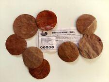 100 Premium Indian Almond Leaf HALO |  Betta, Shrimp & Fish Breeding Aquariums