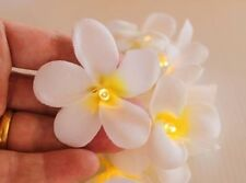 White Frangipani Flower AA Battery Pack LED Fairy Lights & Flowers by GLOWFROST