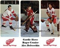 NHL 1966 Detroit Red Wings Howe Crozier Delvecchio Color 8 X 10 Photo Picture
