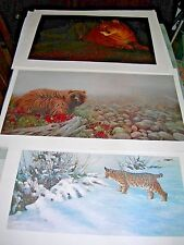 Morten E Solberg 3 Signed & Numbered Wildlife Prints Grizzly Bear Bobcat Cougar