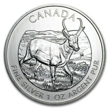 2013 Canadian $5 Pronghorn Antelope 1 oz .9999 Silver Coin - Wildlife Series