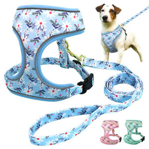 Floral Mesh Dog Harness and Lead set for Small Medium Large Dogs Walking Vest