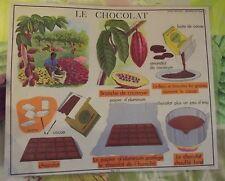 Objet de Métier Set de Table Décoratif Chocolatier Cacaoyer Chocolat Cacao