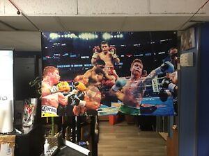 HUGE! 44x28 CANELO ALVAREZ vinyl Banner POSTER  Muhammad Ali Mike Tyson GGG