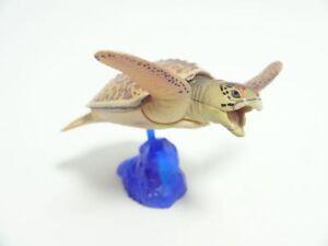 Kaiyodo Capsule Q Archelon Prehistoric Sea Turtle Dinosaur PVC Figurine Figure