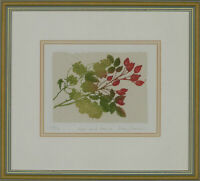 Libby Carreck - Signed & Framed Contemporary Aquatint, Hops and Rosehips
