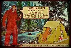 *VINTAGE BIG FOOT SIGN* NO SEX FOREST WOODS SERVICE U.S. FUNNY MAN CAVE RUSTIC