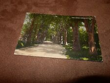 Lancashire postcard - The green drive - Lytham - The Fylde