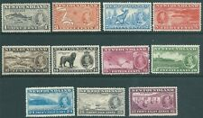 NEWFOUDLAND 1937 George VI mint Coronation Long SET