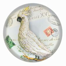 Paperweight Cockatoo Parrot Bird Drawing Under Glass Paperweight Desk Accessory