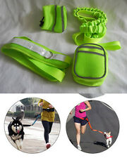 Pet Dog Out Running Jogging Hand Free Lead Leash Waist Belt w two Pockets-4p set
