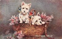POSTCARD DOGS -  HEATHER BELLS  - TUCK