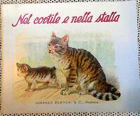 NEL CORTILE E NELLA STALLA LORENZO BERTONI & C PARMA completamente illustrato;